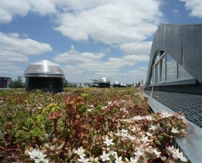 HQE: l'exemple de la Maison Eco-Citoyenne de Bordeaux