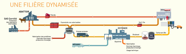 L'usine d'ESTENER transforme la graisse animale 'impropre' en biodiesel
